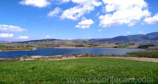 lago-pantano-saporilucani
